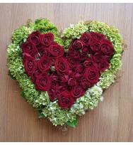Coração Encantado